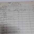 """Prezicări privind licitația """"George Enescu. Univers și creație"""""""