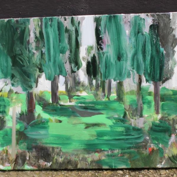 Imagini de la tabăra de pictura de la Tescani - COLONIA 21, 10-21 iulie 2018