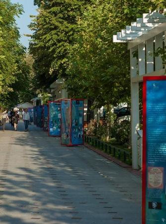 Istoria Festivalului și Viața lui George Enescu