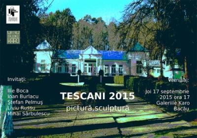 """Vernisajul expoziției  de pictură și sculptură """"Tescani 2015"""""""