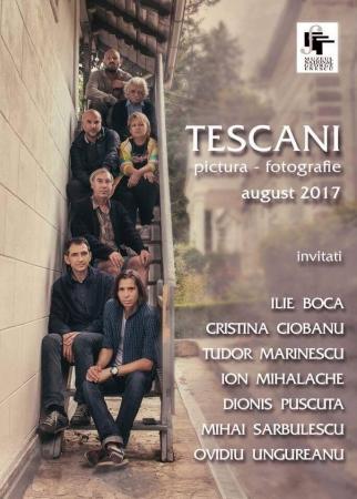 TESCANI / pictura - fotografie