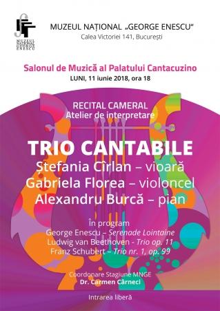 Recital cameral TRIO CANTABILE